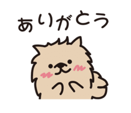 Pomeranian and Shihtzu sticker #1417364