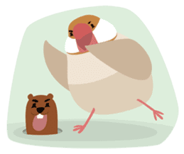 BirdsDay sticker #1420765