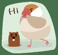 BirdsDay sticker #1420767