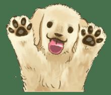 The Golden Retriever Puppy! sticker #1450599