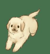 The Golden Retriever Puppy! sticker #1450610