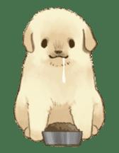 The Golden Retriever Puppy! sticker #1450627