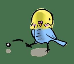 Parakeet party! sticker #1453883