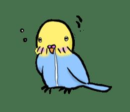 Parakeet party! sticker #1453887