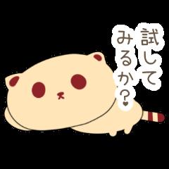 Tanuki Cookie