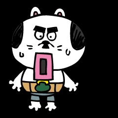 Nagoya cat