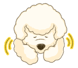White Poodle (fixed) sticker #1501325