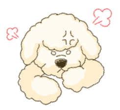 White Poodle (fixed) sticker #1501326