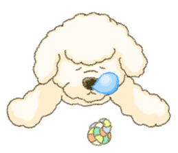 White Poodle (fixed) sticker #1501329