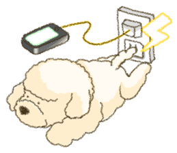 White Poodle (fixed) sticker #1501339
