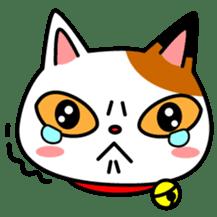 Mike of the troitoiseshell cat sticker #1507812