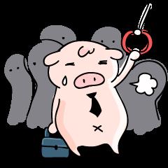 Working Pig, Mr.P!