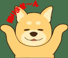 Shiba-inu sticker #1508921