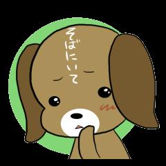 BeagleDogCocoa