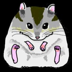 LOVE Hamster