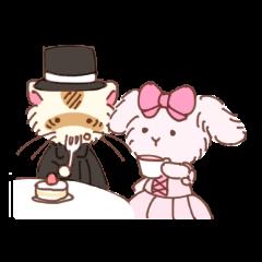 Rabbit and ferret