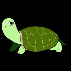 sticker of cute turtle