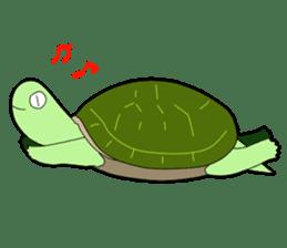 sticker of cute turtle sticker #1521170