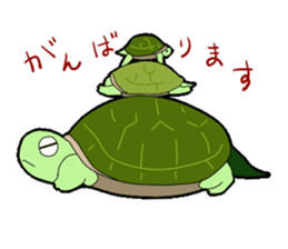 sticker of cute turtle sticker #1521171