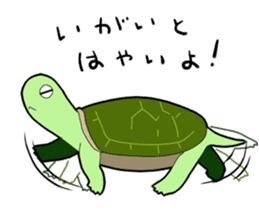 sticker of cute turtle sticker #1521178