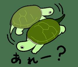 sticker of cute turtle sticker #1521183