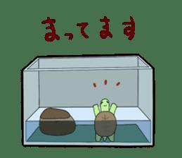 sticker of cute turtle sticker #1521199