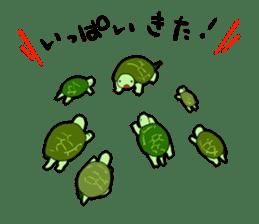 sticker of cute turtle sticker #1521203