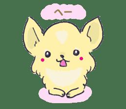 Chihuahua peek from gap sticker #1521212