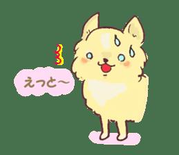 Chihuahua peek from gap sticker #1521214