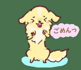 Chihuahua peek from gap sticker #1521221