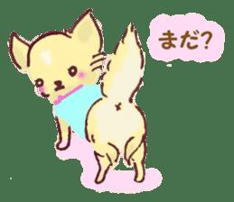 Chihuahua peek from gap sticker #1521235