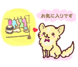 Chihuahua peek from gap sticker #1521243
