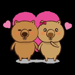 Merry wombats Melissa & Max