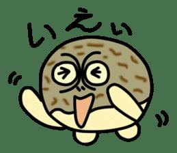 Peetarou of Namaqua Rain Frog sticker #1549256