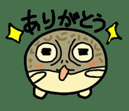 Peetarou of Namaqua Rain Frog sticker #1549260