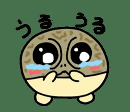 Peetarou of Namaqua Rain Frog sticker #1549267