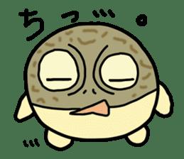 Peetarou of Namaqua Rain Frog sticker #1549273