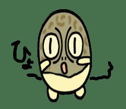 Peetarou of Namaqua Rain Frog sticker #1549277