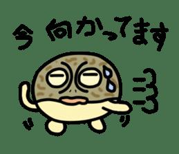 Peetarou of Namaqua Rain Frog sticker #1549283