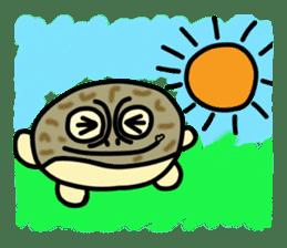 Peetarou of Namaqua Rain Frog sticker #1549290
