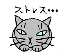 The cat of my home sticker #1550525
