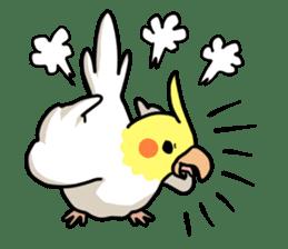 Lutino cockatiels sticker #1551297