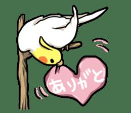 Lutino cockatiels sticker #1551300
