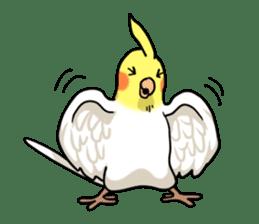 Lutino cockatiels sticker #1551310