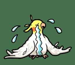 Lutino cockatiels sticker #1551322