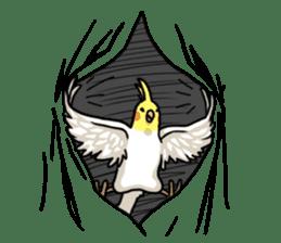 Lutino cockatiels sticker #1551326