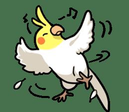 Lutino cockatiels sticker #1551333