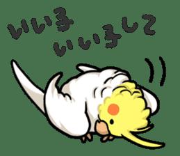 Lutino cockatiels sticker #1551334