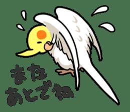 Lutino cockatiels sticker #1551335