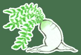 Mr.Radish sticker #1552138